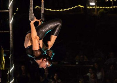 aerial-artists-for-hire-vanessa-fae-bar